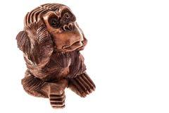 Drastischer Affe Stockfoto