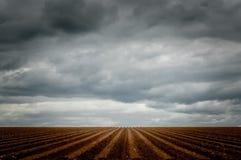 Drastischer Himmel über einem gepflogenen Feld lizenzfreies stockfoto