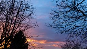 Drastischer Himmel bei Sonnenuntergang im Wald Lizenzfreies Stockbild