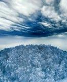 Drastischer Himmel über dem Holz Stockfotografie