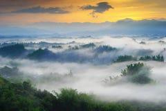 Drastischer Nebel mit Berg und Baum stockbilder