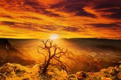 Drastischer Sonnenuntergang Lizenzfreie Stockfotos