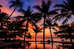 Drastischer Sonnenuntergang mit Schattenbildpalme in Thailand Lizenzfreie Stockfotografie