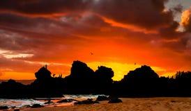 Drastischer Sonnenuntergang am Strand Lizenzfreie Stockfotos