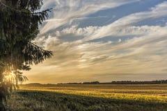 Drastischer Sonnenuntergang und Wolken Lizenzfreie Stockfotos