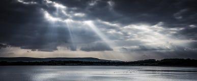 Drastisches Sonnenlicht über Reservoir mit wild lebenden Tieren auf dem Funken des Wassers Stockfotos
