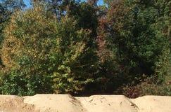 Draußen Bäume, Sand-Hügel, Himmel Lizenzfreies Stockfoto