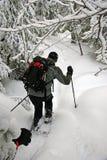 Draußen im Winter Lizenzfreie Stockfotografie