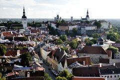 Draufsicht über alte Stadt in Tallinn Estland Lizenzfreie Stockfotos