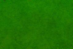 Draufsicht der üppigen Beschaffenheit des grünen Grases Stockfotografie