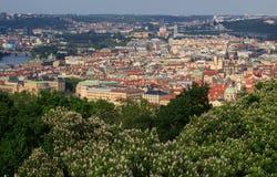 Draufsicht der alten schönen Stadt mit dem Fluss und den Brücken Prag, getont Stockfoto