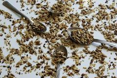 Draufsicht der gerösteten Mischung der Samen - Sonnenblumen-, Lin- und Sesamsamen stockfotos