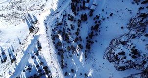 Draufsicht der schneebedeckten Wälder und der Berge Viele Kiefer und Tannen Getretener Weg in den Bergen stock footage