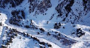 Draufsicht der schneebedeckten Wälder und der Berge Viele Kiefer und Tannen Getretener Weg in den Bergen stock video footage