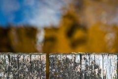 Draufsicht der verwitterten Holzbrückenahaufnahme über Waldstrom Lizenzfreie Stockbilder