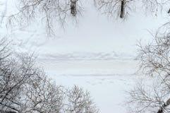Draufsicht der Winterlandschaft Weg im Schnee zwischen den Bäumen Stockfotos