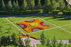 Draufsicht des Blumenbeets in Zelenograd von Moskau, Russland Lizenzfreies Stockbild