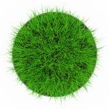 Draufsicht des Grastopfes lizenzfreie abbildung