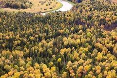 Draufsicht des Herbstwaldes Lizenzfreies Stockfoto