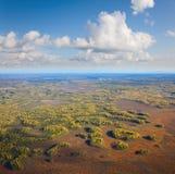 Draufsicht des Herbstwaldes und -sümpfe Stockbild