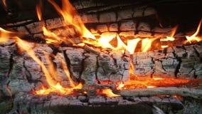 Draufsicht des Lagerfeuers des Niederlassungs-Brandes in Forest Slow Motion stock video footage