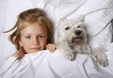 Draufsicht des schönen blonden kleinen Mädchens, das mit weißem Schnauzerhündchen auf weißem Bett liegt Portrait von zwei nassen  Stockfoto