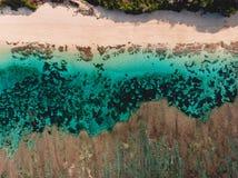 Draufsicht des tropischen Strandes mit TürkisMeerwasser und Riff, Luftbrummenschuß stockbild