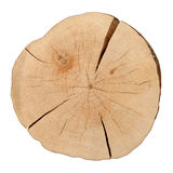 Draufsicht eines Baum-Stumpfs Lizenzfreie Stockfotografie