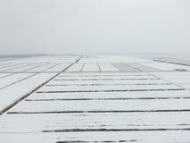 Draufsicht eines gepflogenen Feldes im Winter Ein Feld des Weizens im Schnee Stockfotos