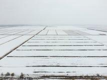 Draufsicht eines gepflogenen Feldes im Winter Ein Feld des Weizens im Schnee Lizenzfreies Stockbild