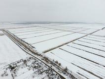 Draufsicht eines gepflogenen Feldes im Winter Ein Feld des Weizens im Schnee Lizenzfreie Stockfotos