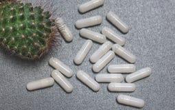 Draufsicht eines Kaktus und der weißen Kapseln oder Medizin auf grauem Hintergrund lizenzfreie stockbilder