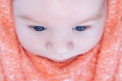 Draufsicht eines schönen Schätzchens mit blauen Augen Stockbild