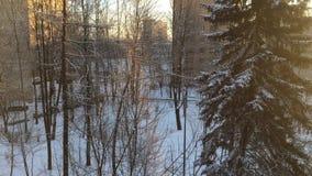 Draufsicht eines Wohngebäudes auf einer schneebedeckten Straße Die Sonne ist glänzend stock video footage