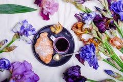 Draufsicht Frühstück mit süßen Hörnchen und Kaffee auf dem Schwarzblech, das mit Iris umgeben wird, blüht im Bett Konzept des gut Stockbilder