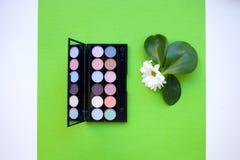 Draufsicht Palette von Pastellmehrfarbenkosmetik bilden, Lidschattenpalette, bunte Schatten masern auf grünem Hintergrund stockfoto