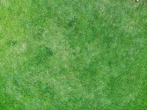 Draufsicht und oben schließen des Beschaffenheitshintergrundes des grünen Grases lizenzfreie stockbilder