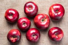 Draufsicht von acht bunten hellen glänzenden roten Äpfeln auf braunem Sack Stockbilder