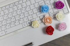 Draufsicht von bunten Rosen und von weißem Laptop auf Hintergrund lizenzfreie stockfotografie