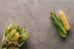 Draufsicht von den frischen Maiskolben auseinander gebunden mit Seil und einem Mais auf Grauem lizenzfreie stockfotografie