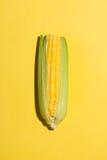 Draufsicht von einem Mais auf gelbem Hintergrund Stockfoto