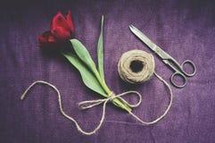 Draufsicht von einer roten Tulpe gebunden mit Schnur Lizenzfreies Stockfoto