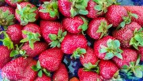 Draufsicht von Erdbeeren Lizenzfreie Stockfotos