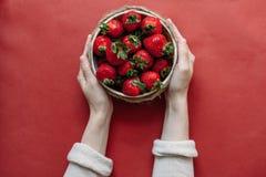 Draufsicht von Erdbeeren in der Schüssel auf rotem Hintergrundblumenstrauß von Pfingstrosen stockfotografie