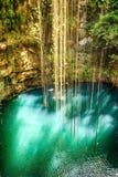 Draufsicht von Ik-Kil Cenote, nahe Chichen Itza, Mexiko. Stockfotografie