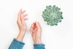 Draufsicht von weiblichen Händen mit sauberer nackter Maniküre auf dem weißen Hintergrund stockbild