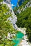 Draufsicht zum Gebirgsfluss Tara, Montenegro, Europa Stockfoto