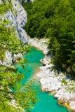 Draufsicht zum Gebirgsfluss Tara, Montenegro, Europa Stockfotografie