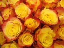 Draufsichtblumenstrauß von gelben Rosen Stockbild