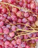Draufsichtnahaufnahme der roten Trauben, natürlicher Hintergrund Lizenzfreies Stockbild
